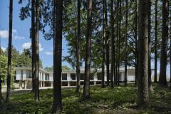 V lesích kolem pavilonu jsou pole žulových kamenů. Mohutné kameny slouží jako základová konstrukce. Na základě jejich rozměrů a vzhledu se specifikovala jejich poloha v modulové síti.